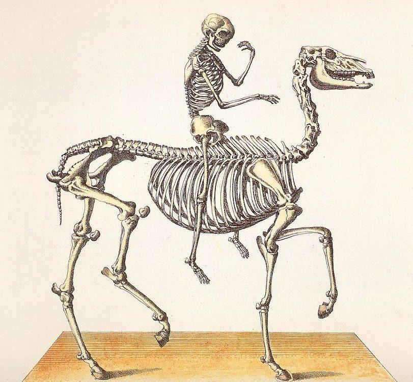 zdorovaya-spina
